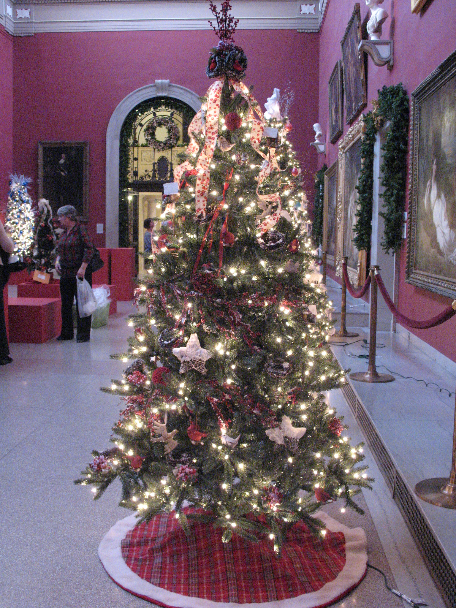 Wadsworth Tree 2009